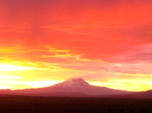The sunset over Mt. Adams. A view in the Lower Valley I'll never tire of.