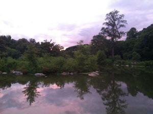 Prospect Park-Summer